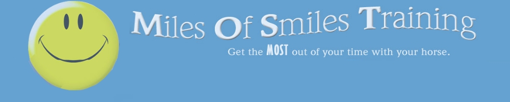 Logo for the top on the Miles of Smiles Training Calendar.