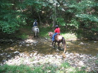 Two horses and riders crossing a stream.